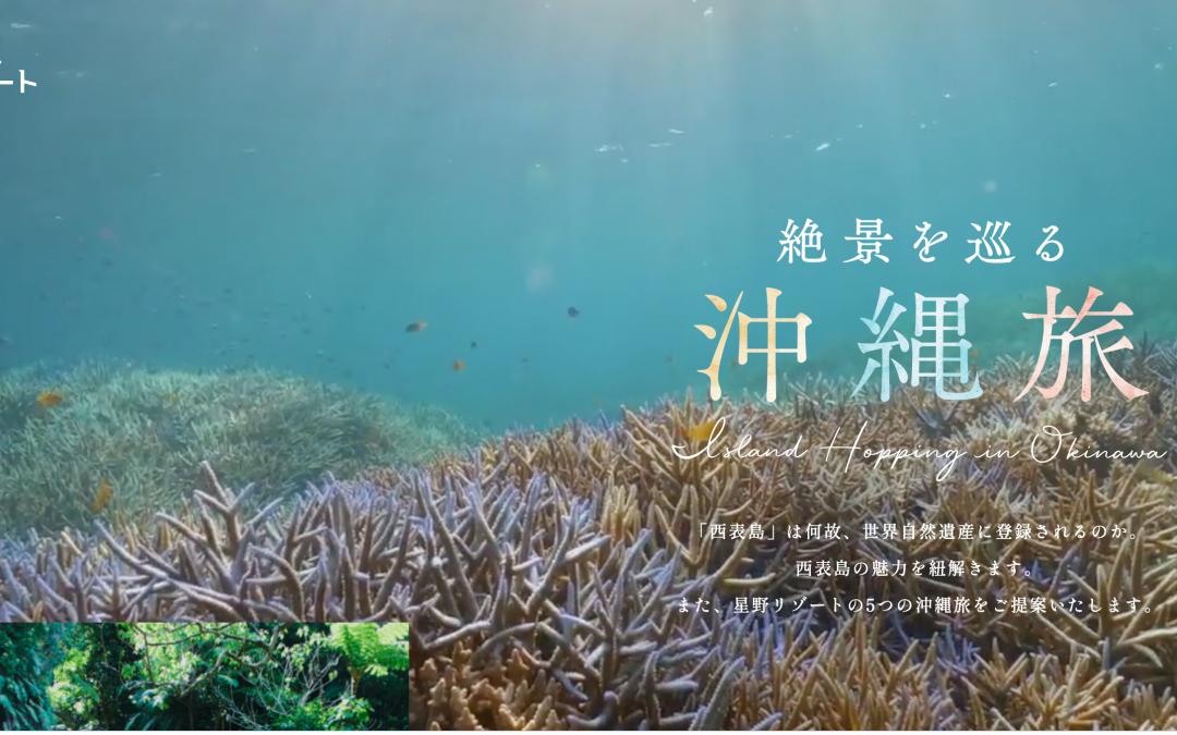 高橋政司が「西表島の世界自然遺産登録について」星野リゾートの特設サイトに寄稿しました