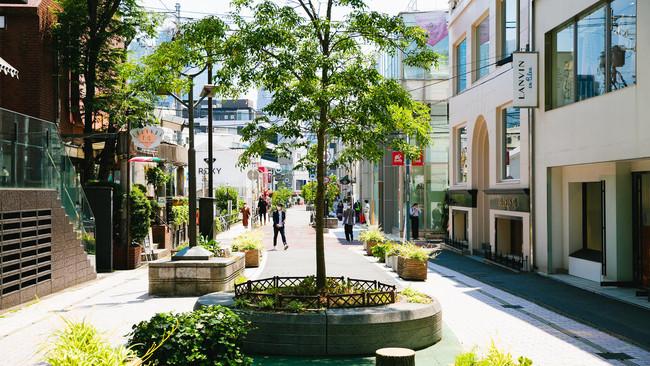 タイムアウト東京、『世界で最もクールな30のストリート』(日本語)を公開。世界で最もクールなストリートに選ばれたのは、メルボルンの『スミス・ストリート』。